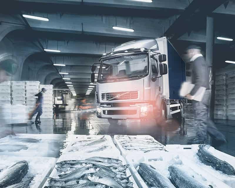 camion réfrigéré (15)