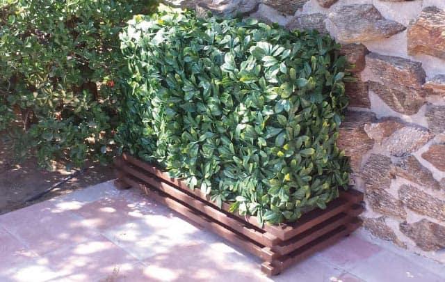 paravent végétal